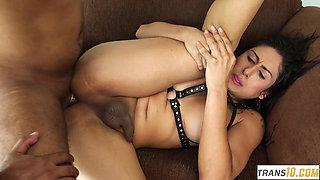 Bigbooty Latin tgirl stuffed by hard dick